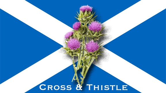 Cross and Thistle Scottish Dancers Virtual Class
